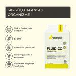 FluidGO-QG